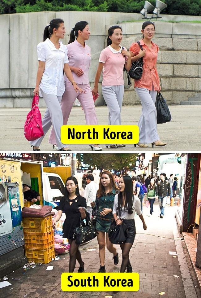 South Korean masseuse Rina Ellis Fahrten stark boner Schwanz auf der Oberseite